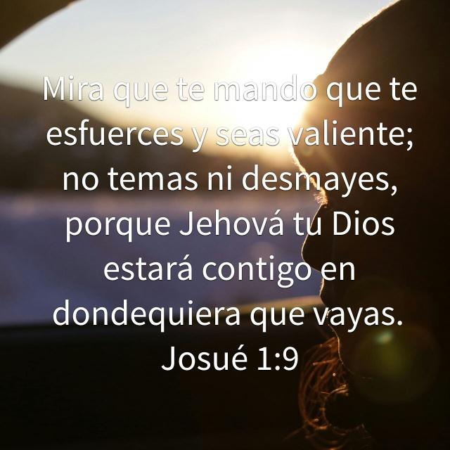 Versiculos Biblicos De Promesas De Dios: Te Necesito Mi Dios, Sin Ti No Puedo Continuar…